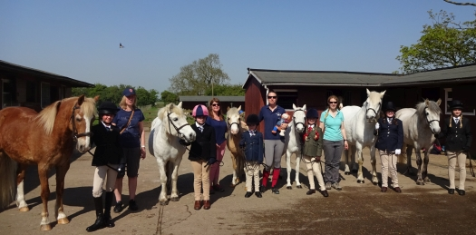 May Day Show 2018-Willow Farm Group